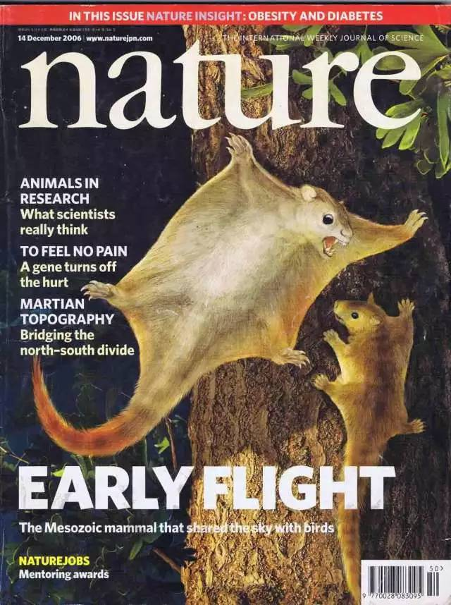 英文版自然杂志PDF下载学习分享