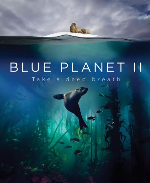 少儿自然科普  蓝色星球2 Blue Planet II视频分享!