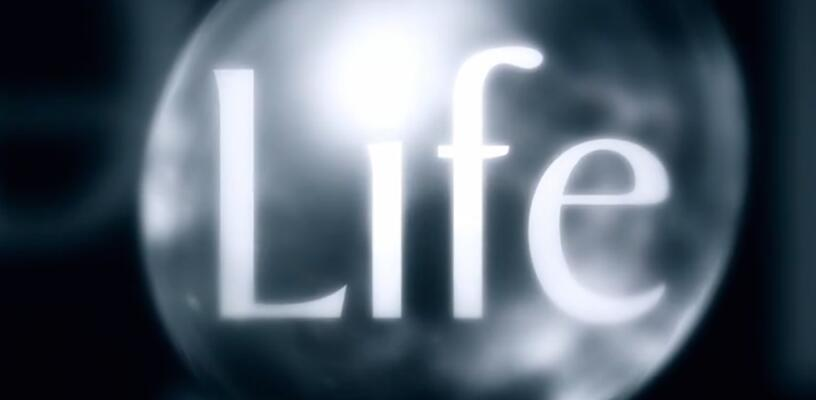 了解大自然就从《生命脉动》开始 BBC纪录片共10集音频分享!