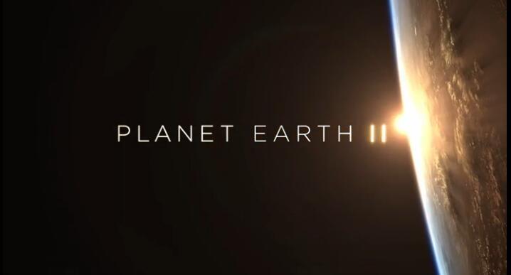少儿地理<b style='color:red'>科普</b>  BBC出品《地球脉动 Planet Earth II 》 高清云盘资源视频下载!