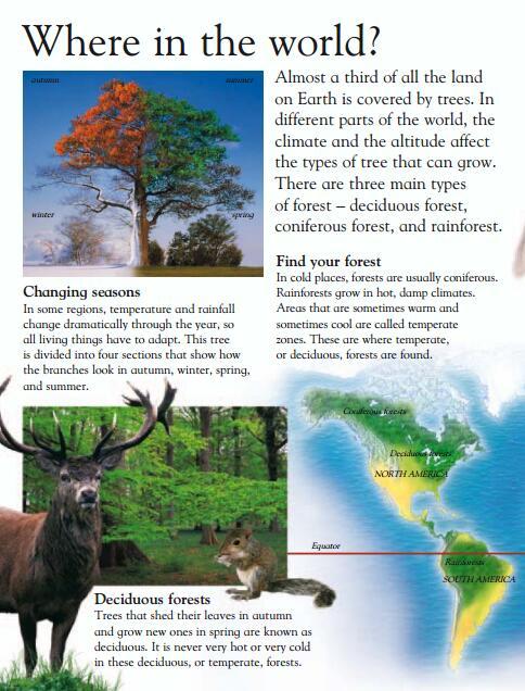 DK Eyewonder Collection视觉奇观 <b style='color:red'>小学英语</b>科学自然拓展绘本电子版分享!