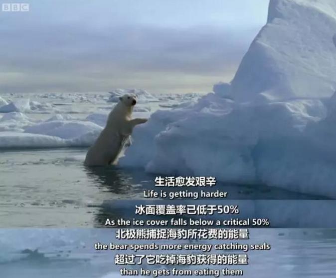BBC出品的《地球最壮观的景色》,每一帧都是视觉盛宴学习分享