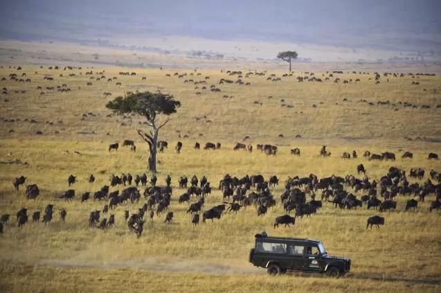 BBC纪录片《非洲》1-6集,学习英语好资源学习分享