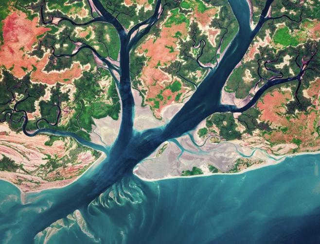 BBC高分神作《从太空看地球》,非洲大草原亮了!系列下载!