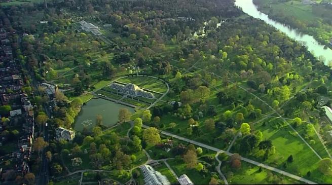 BBC纪录片 《植物王国 Kingdom of Plants》三集+花絮全系列
