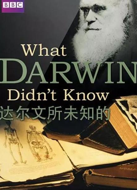 bbc纪录片《达尔文所未知的》物种起源故事高清影视下载全套分享!