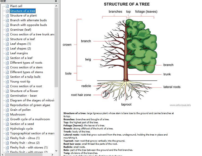 托福分类词汇电子书系列可视化彩色版分享视频下载!