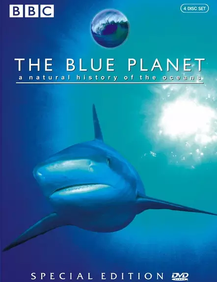 蓝色星球1免费观看,史上最美纪录片带你探索海洋秘密网盘资源下载。