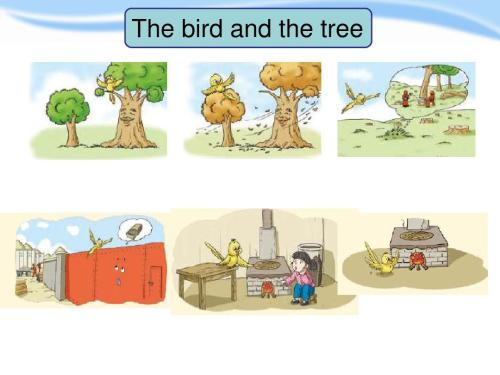 DK 2021新书 鸟类图鉴 The Bird Atlas